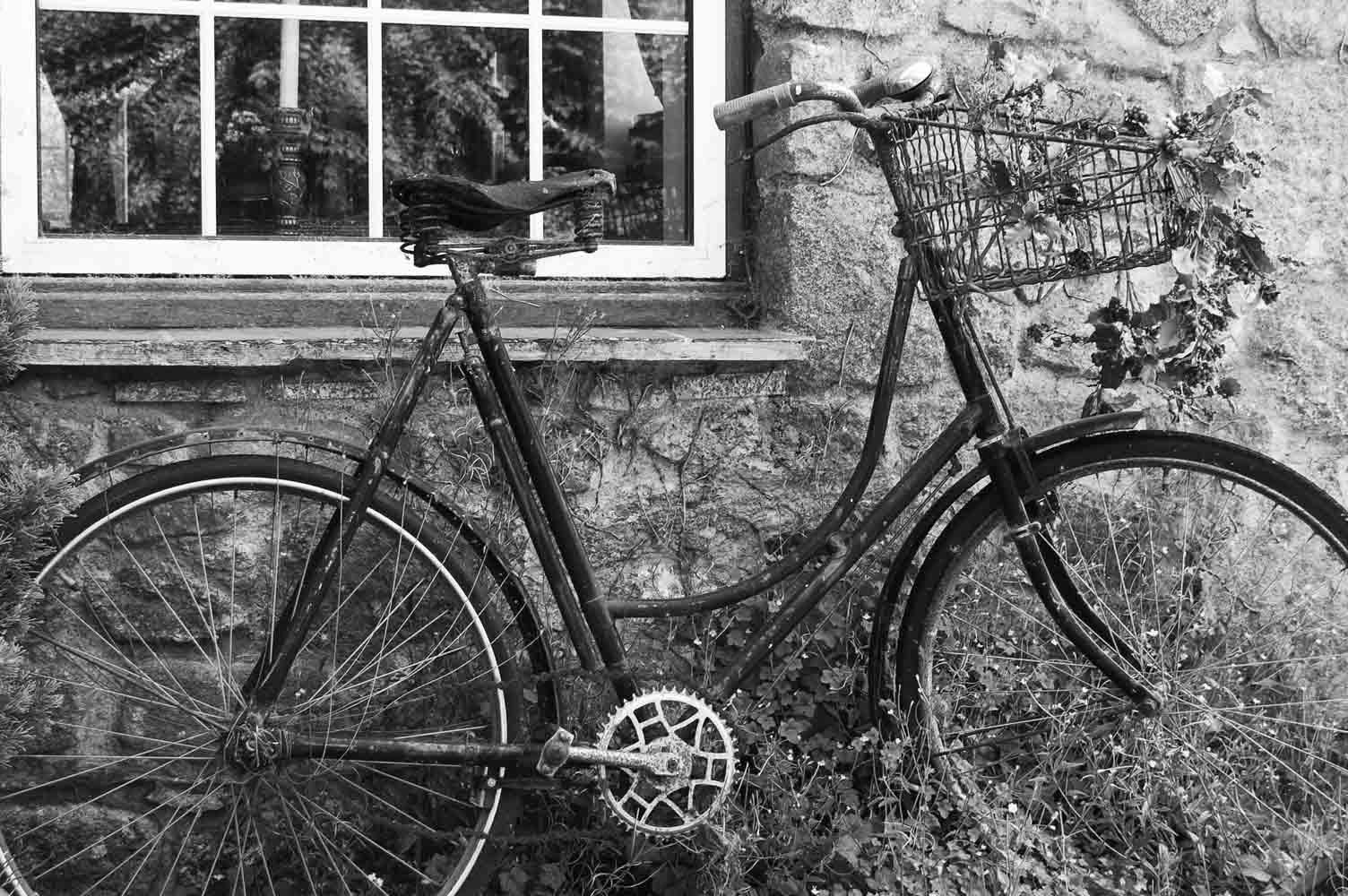 Authors Bicycle
