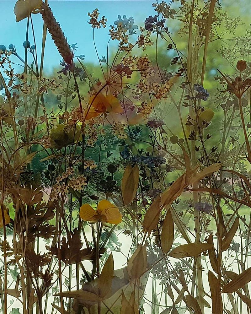 glass pressed flowers